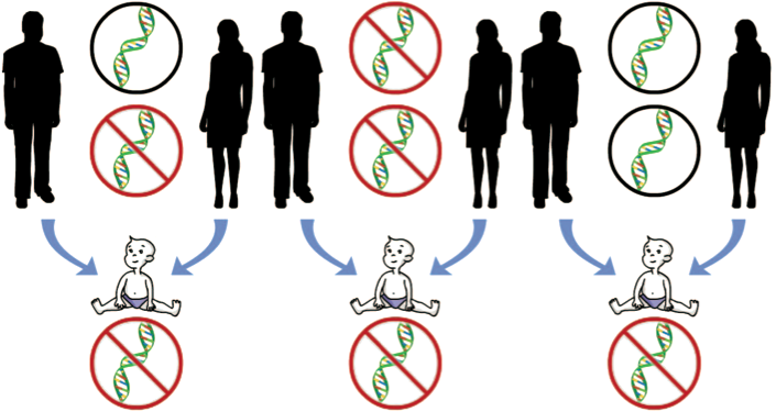 Diagram suggesting 3 methods of obtaining a dna disorder: 1. from male parent 2. from female parent 3. Neither parent is genetic origin.