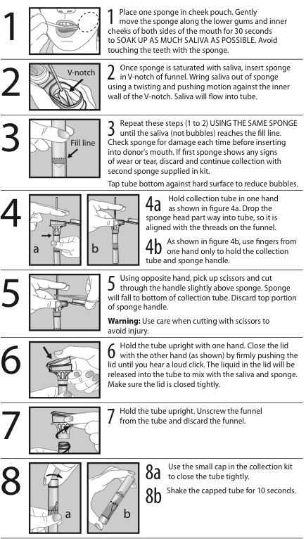 8 steps of detailsed instructions of how to collect a sample