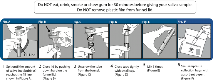 Do NOT eat, drink, smoke or chew gum for 30 minutes before giving your saliva sample. Do NOT remove plastic film from funnel lid. Instructions: 1 Spit until the amount of saliva (not bubbles) reaches the fill line shown in Figure A. 2 Close lid by pushing down hard on the funnel lid. (Figure B) 3 Unscrew the tube from the funnel. (Figure C) 4 Close tube tightly with small cap. (Figure D) 5 Mix 5 times. (Figure E) 6 Seal samples in collection bags with absorbent paper. (Figure F)