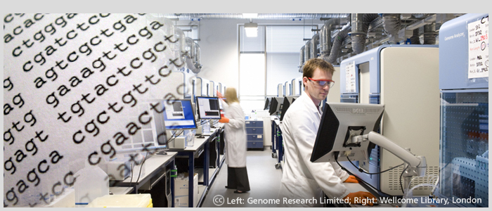 Sequencing Room at the Wellcome Trust Sanger Institute